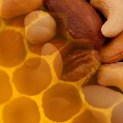 Miel de Azahar con Frutos Secos