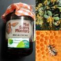 Miel de Encina (disponible en Agosto)